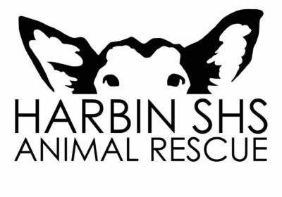 Press Release: HARBIN SHS Animal Rescue and Middle Kingdom Wrestling form historic partnership.